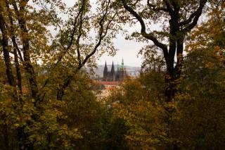 hrad, architektura, město, les