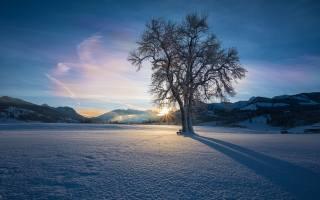 zima, západ slunce, nebe, sníh