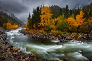 podzim, krajina, Doug Shearer, řeka, kameny, les, hory