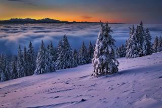 зима., sníh