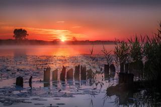 трава, лучи, пейзаж, закат, природа, туман, вечер, кувшинки, водохранилище, Андрей Чиж