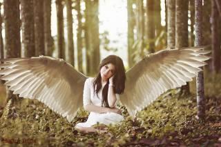 holka, obraz, anděl
