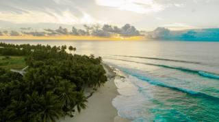 tropics, the ocean