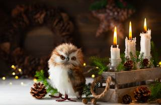 праздник, Рождество, ящик, свечи, Композиция, игрушка, птица, совёнок, Новый год