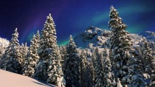příroda, krajina, hory, stromy, jedli, les, svah, zima, sníh, noc, záře, hvězdy