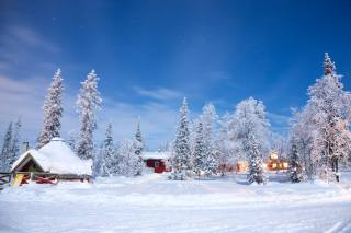 příroda, krajina, zima, sníh, stromy, doma