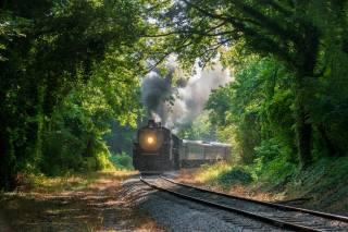 ліс, залізниця, поїзд, паровоз, дим