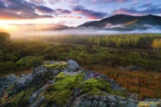 гори, ліс, туман, красиво, фото, Павло Силиненко