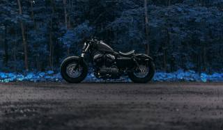 les, cesta, motocykl, Harley Davidson, forty eight