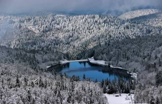 hills, forest, snow, the lake