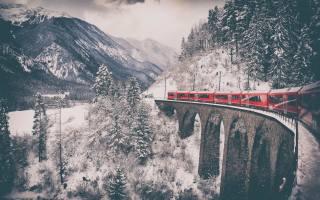 winter, forest, snow, railway, train, the bridge