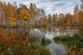 autumn, the river, photo, Николай Шевченко
