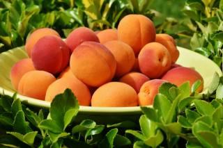 peaches, bowl