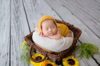 азиаты, baby, basket, sleeping, sunflowers