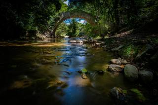 forest, the river, river, the bridge, stone