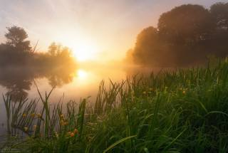утро, туман, восход, солнце, речка, фото, Андрей Олонцев