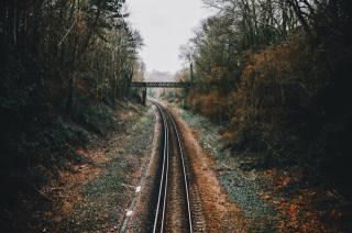 осінь, ліс, залізниця