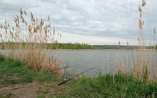 Травень, озеро, рибалка, удочки