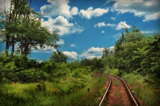 залізниця, ліс, небо, хмари