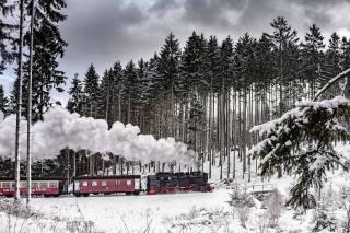 ліс, сніг, поїзд, паровоз, дим