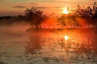 лето, утро, Восход солнца, туман, фото, Павел Ващенков