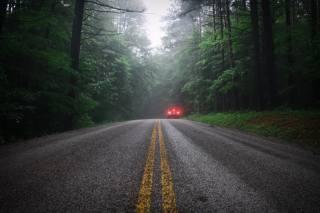 дождь, туман, дорога, Авто