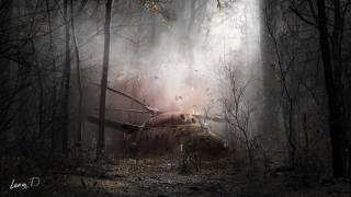 Сталкер, гра, ліс, Вертоліт, аномалія, елена диденко