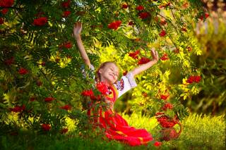 дівчинка, дитина, сукню, природа, гілки, Горобина, ягоди, грона, трава, глек