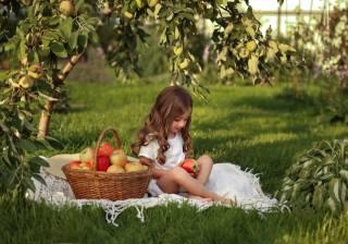 дитина, дівчинка, природа, літо, сад, дерево, яблуня, трава, покривало, кошик, фрукти, яблука