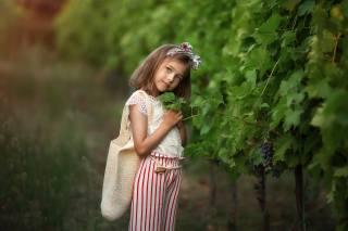 Анастасия Бармина, дитина, дівчинка, штани, блузка, сумка, природа, виноградники, погляд, грона, ягоди, виноград