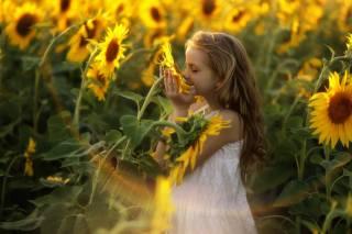 дитина, дівчинка, русява, сукню, природа, літо, соняшники, промені
