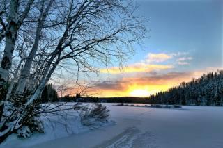 Kanada, quebec, příroda, krajina, zima, stromy, les, řeka, západ slunce