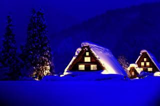 Japonsko, příroda, krajina, zima, světlo, noc, sníh, stromy, Lesy, hory, doma, jedli, chaty