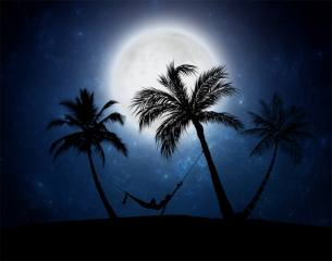місяць, пальми, ніч