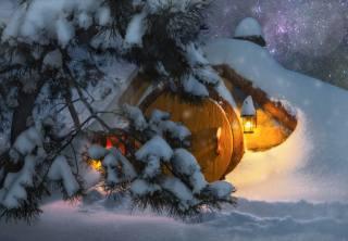 zima, světlo, sníh, stromy, příroda, světla, borovice, stezka, bydlení, Hobit, Andrey Chabrov, землянка
