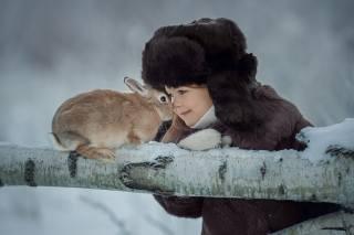 dítě, dívka, Zvíře, králík, kufr, strom, příroda, zima