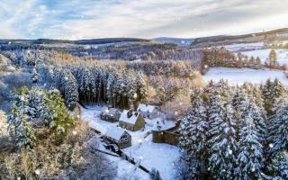 zima, Velká británie, sníh, Severní, Irsko, les, stromy, doma, Tyrone, výhled, SHORA