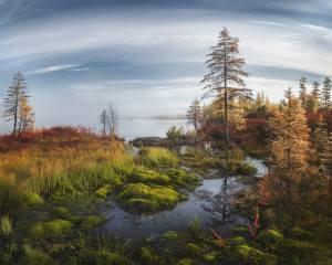 осінь, краєвид, фото, Ирина Абатурова