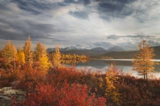 podzim, jezero, foto, Ирина Абатурова
