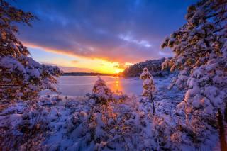 озера, new Jersey Pinelands, захід, зима, сніг