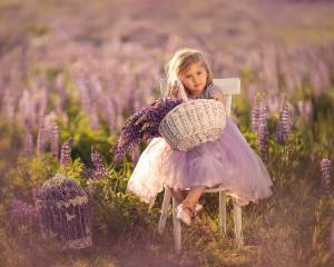 child, girl, dress, chair, nature, field, flowers, lupines, basket, cell