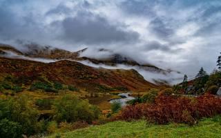 природа, осінь, гори, струмок, вода, туман, хмари, рослини
