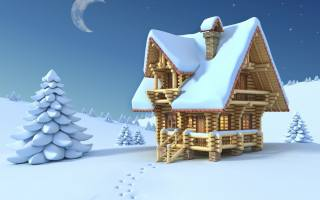 the house, winter, traces, forest, the moon, night, star, the sky