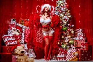 Рождество, елка, подарки, бюстгальтер, ноги, чулки