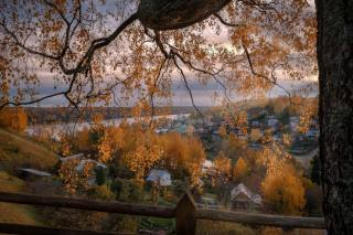autumn, trees, landscape, branches, nature, the city, river, tree, home, the fence, birch, Volga, плёс, Андрей Чиж