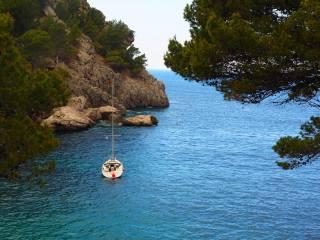 море, краєвид, гілки, природа, скеля, човен, бухта, хвоя, Іспанія, Майорка