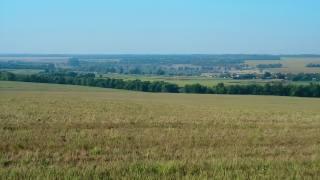 літо, краєвид, трава
