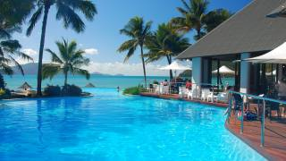 resort, pool, palm trees, sea