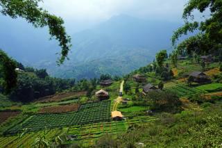 в'єтнам, поля, вдома, Muong Hoa Valley Sapa, природа