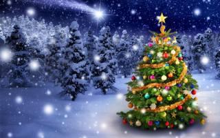 елка, новый, год, зима, снег, ёлки, лес, украшения